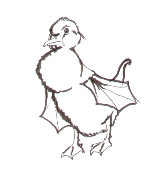 Pen on paper, c. 2005. A chick with bat wings.